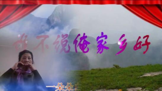 又见山里红葫芦丝简谱歌谱